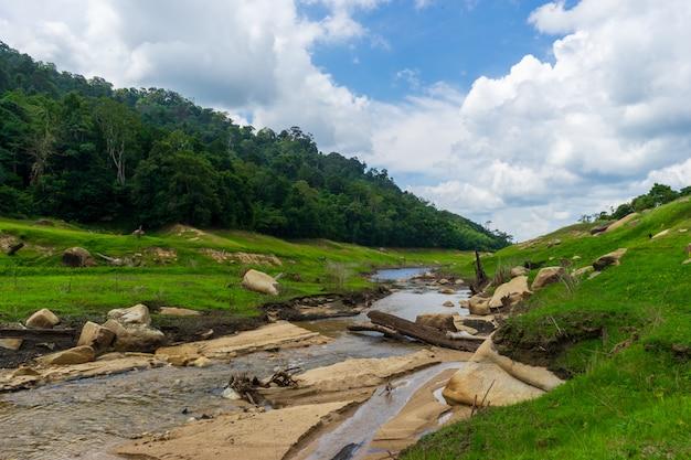 Naturaleza río corriente en el valle