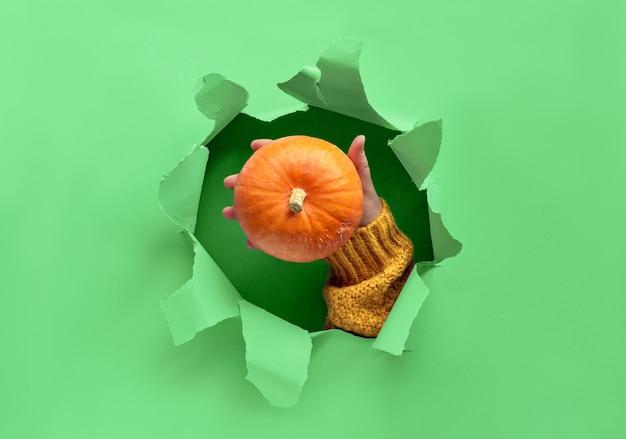 Neo mint paper flat lay con el agujero rasgado en el medio y la mano mostrando calabaza