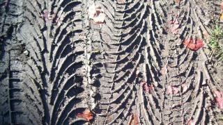 Neumáticos textura huella