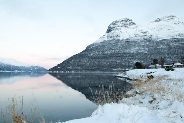 Nevado árbol congelado lago de invierno en el fondo