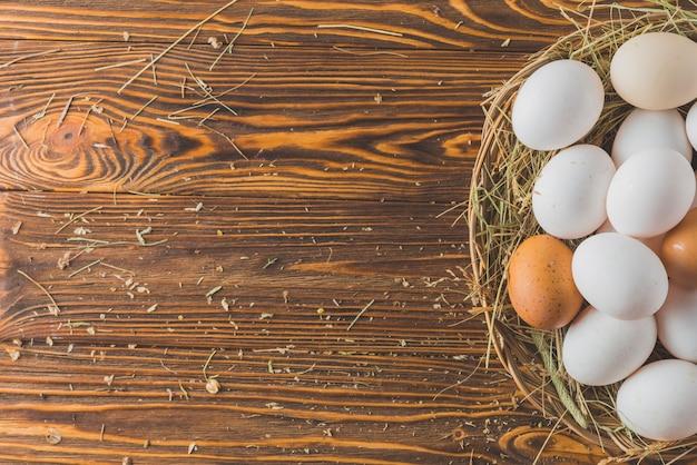 Nido con huevos de gallina
