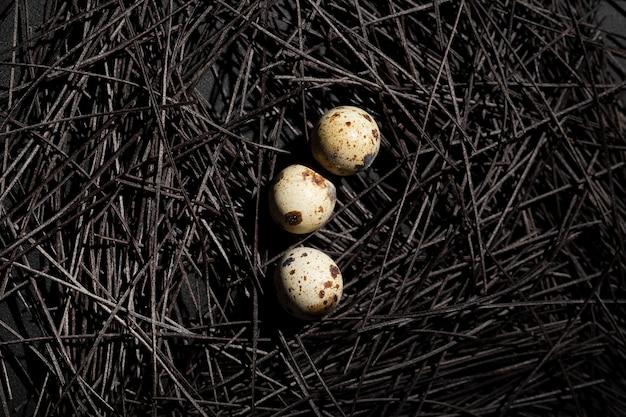 Nido oscuro con huevos de codorniz