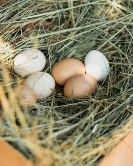 Nido de paja lleno de huevos blancos y marrones