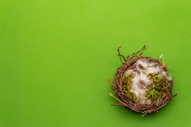 Nido de pájaro de pascua. cero desperdicio, concepto de bricolaje. plumas suaves, musgo. fondo verde