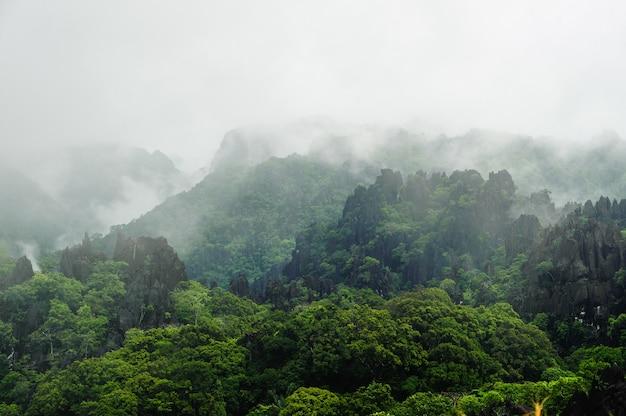 La niebla cubre árboles distantes en un lado de la montaña de piedra caliza, laos