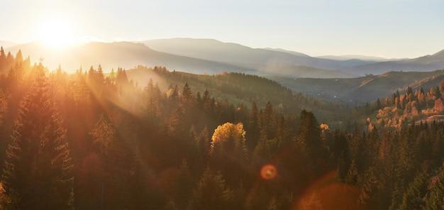 La niebla de la mañana se arrastra con restos sobre el bosque de montaña otoñal cubierto de hojas de oro.