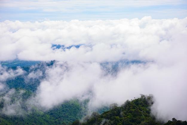 Niebla de montaña escénica en thongphaphum