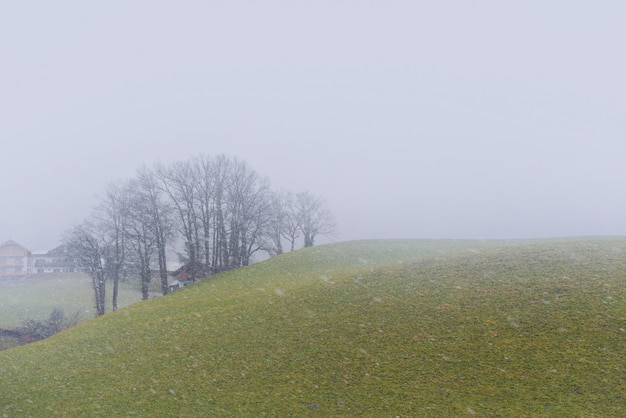 La nieve está cayendo en el campo de europa.