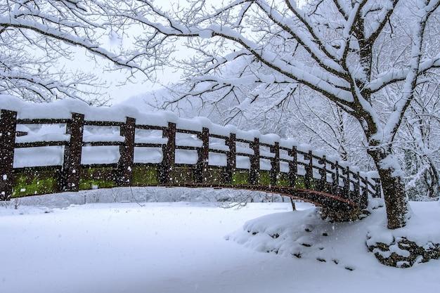Nieve que cae en el parque y un puente peatonal en invierno, paisaje de invierno
