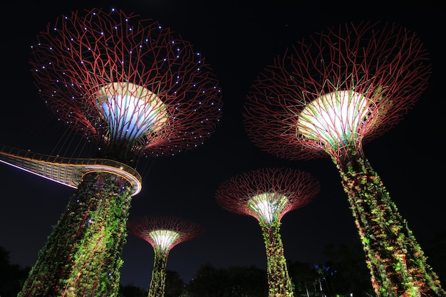 Night show supertrees gardens by the bay un parque natural