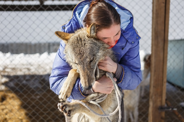 La niña abraza al lobo gris en la jaula al aire libre con lobos y perros.