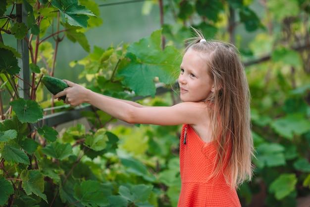 Niña adorable que cosecha los pepinos y los tomates en invernadero.