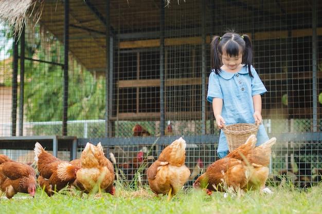 Niña alimentando pollos en la granja.