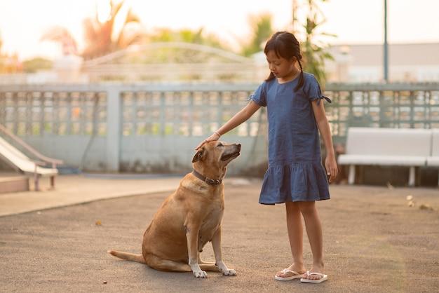 Niña asiática acariciando a un perro en casa con amabilidad y amor