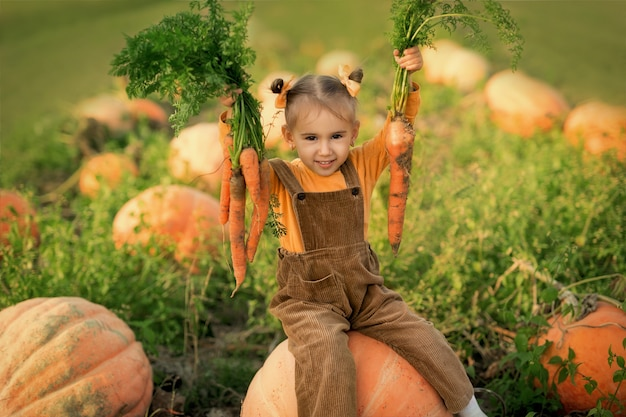 Una niña en un campo con calabazas tiene una zanahoria en sus manos. niña, cosechar, zanahorias