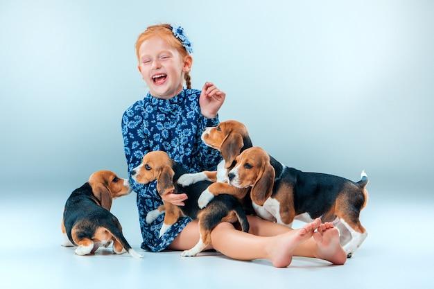 La niña feliz y los cachorros beagle en la pared gris