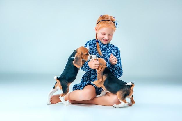 La niña feliz y dos cachorros beagle en pared gris