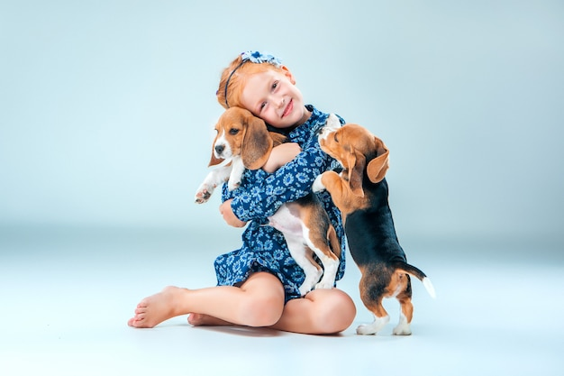 La niña feliz y dos cachorros beagle sobre fondo gris