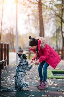 Niña jugando con perro en otoño soleado parque, caída de hojas