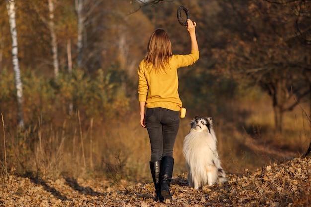 Niña lanza tirador negro a rough collie en yellow autumn park