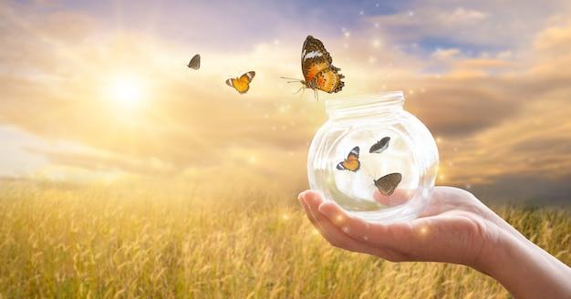 La niña libera a la mariposa del frasco. concepto de libertad