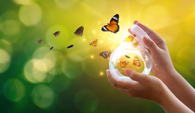 La niña libera a la mariposa del frasco, dorada. concepto de libertad