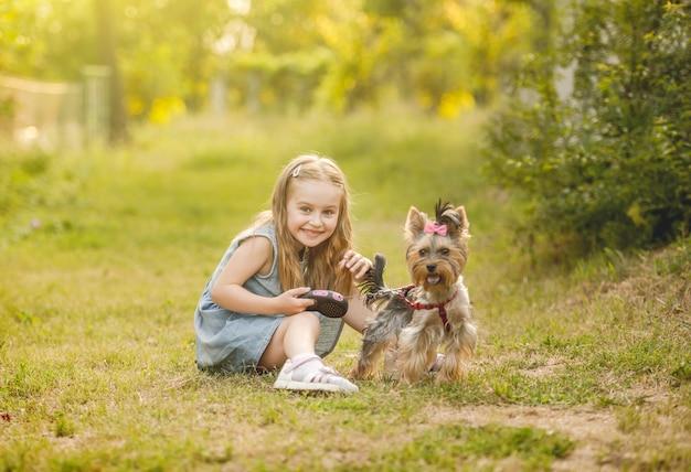 Niña linda niña sentada en el césped con su pequeño perro yorkshire terrier en el parque