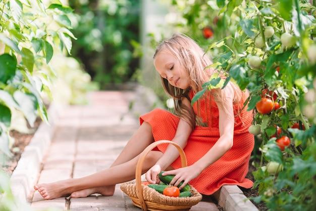Niña linda recolecta pepinos y tomates en invernadero
