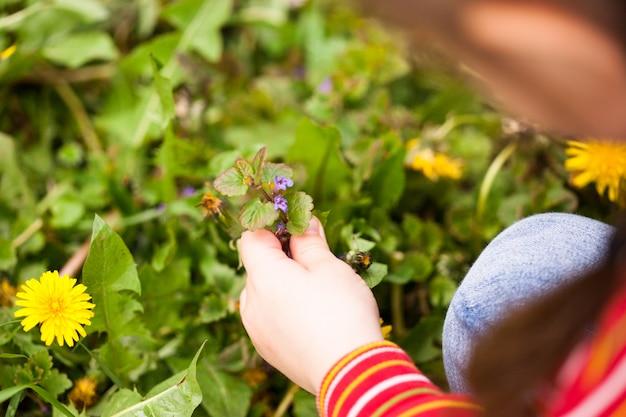 La niña mira las flores de primavera, un paseo por el bosque o el parque.
