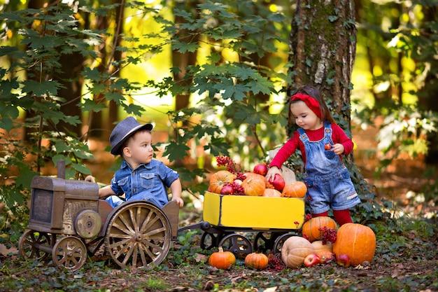 Niña y niño bebé en un tractor con un carro con calabazas