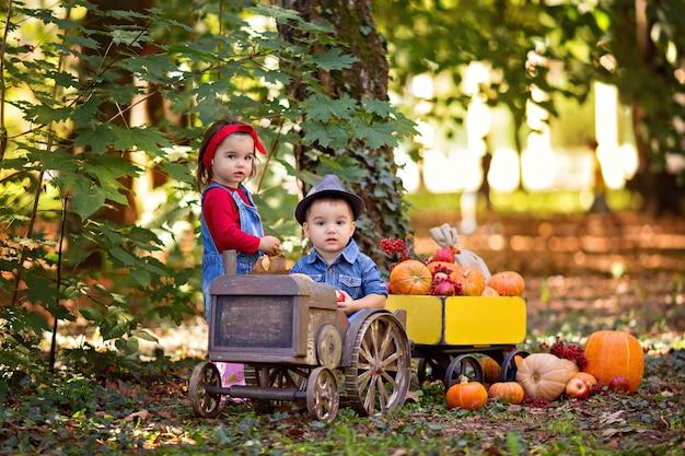 Niña y niño en un tractor con calabazas