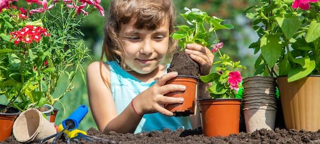 Una niña está plantando flores.