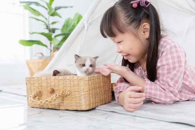 Niña que juega con el gato en la cesta de madera en casa, concepto de la amistad.