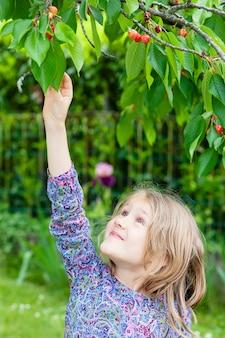 Niña recogiendo una cereza en el jardín