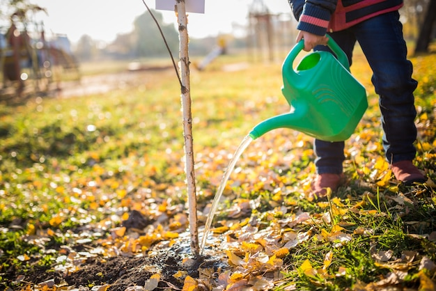La niña seria y trabajadora se ocupa de su futuro y regó un árbol plantado con una regadera en el parque soleado de otoño. concepto de cuidar el futuro de la ecología y la infancia