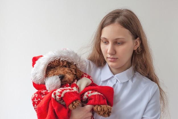 Una niña sostiene un caniche miniatura con un sombrero de santa claus y un suéter navideño