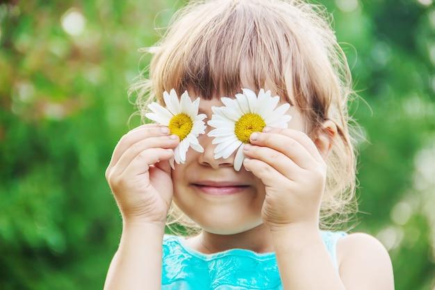 La niña sostiene flores de manzanilla en sus manos. enfoque selectivo