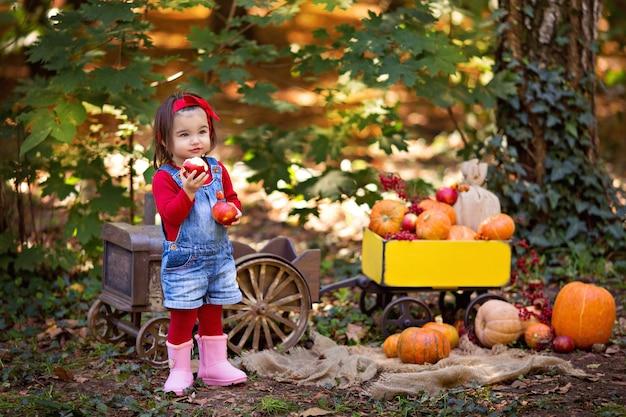 Niña en un tractor con un carro con calabazas, viburnum, rowan, manzanas, cosecha de otoño