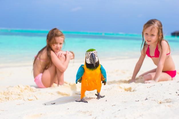 Niñas adorables en la playa con loro colorido