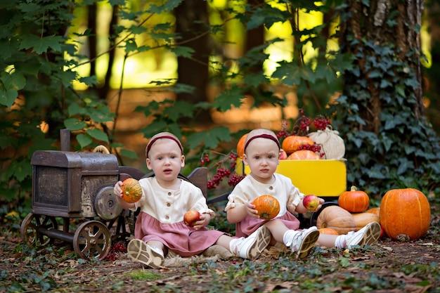 Niñas bebés gemelos junto al tractor con calabazas