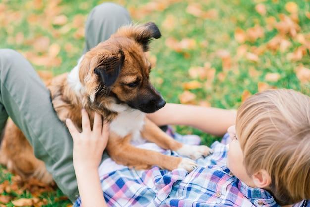 Niño abrazando a un perro y jugando con en el otoño, parque de la ciudad
