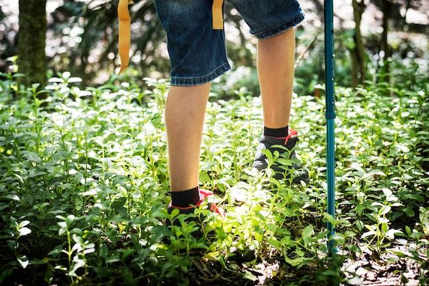 Niño caminando por un bosque