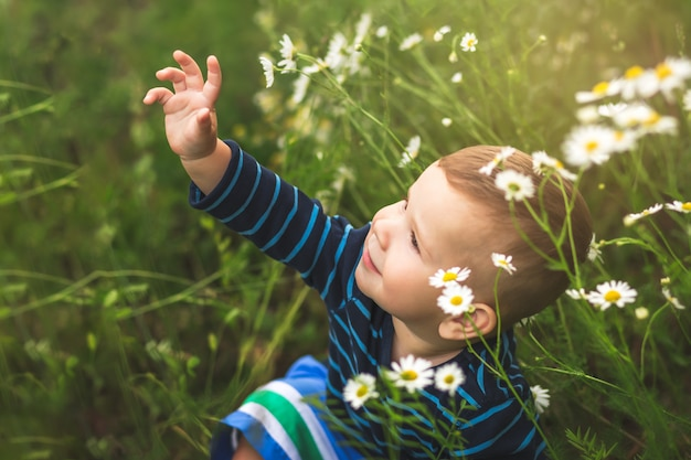 Niño entre flores de margarita