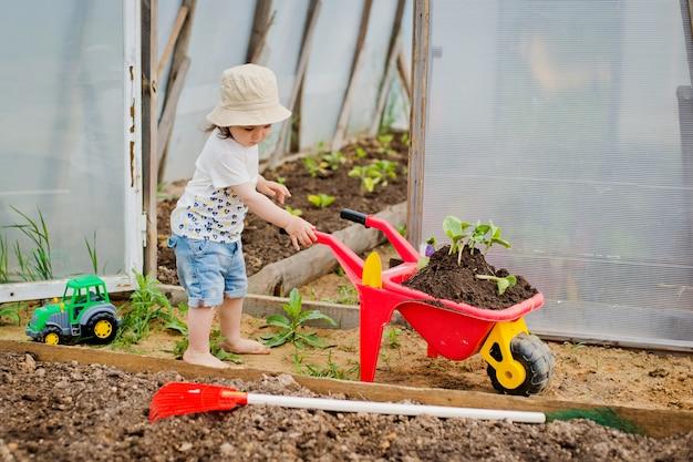 Niño en el invernadero con carretilla y plántulas.