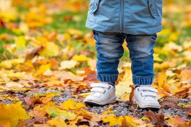 Niño con jeans de pie sobre hojas secas de otoño