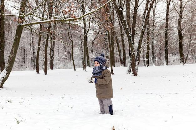 Niño jugando con nieve en la temporada de invierno, ubicación en el parque, cubierto de nieve blanca después de una nevada, primer plano