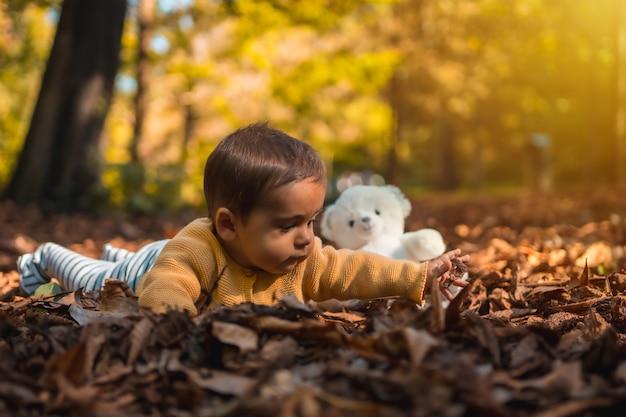 Niño jugando con un oso de peluche blanco en el parque en una puesta de sol de otoño. iluminación natural, bebé de mediados de año acostado sobre las hojas de los árboles