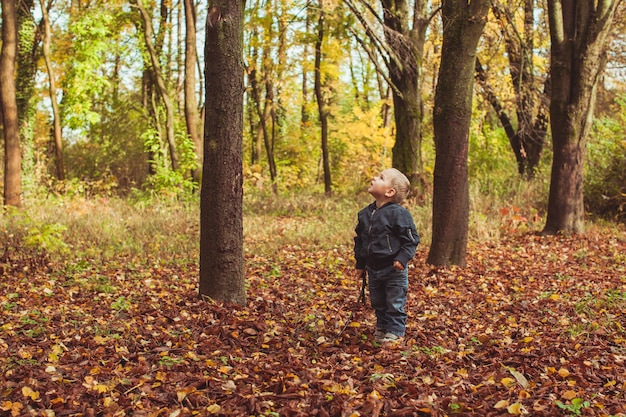 Niño jugando con una puntada como un caballero o un guerrero o un ser humano primitivo en el bosque de otoño. chico rubio parado cerca del árbol