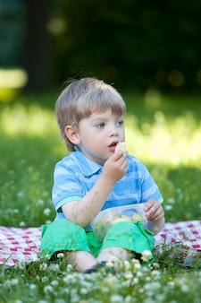 Niño lindo en picnic en el parque