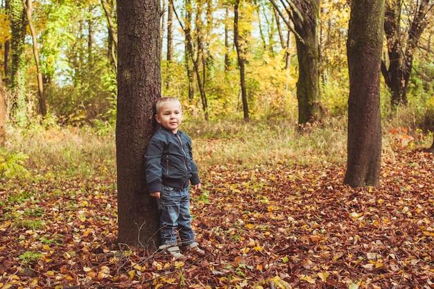 Niño lindo de pie cerca del árbol en el bosque de otoño